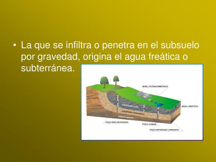 La que se infiltra o penetra en el subsuelo por gravedad, origina el agua freática o subterránea.
