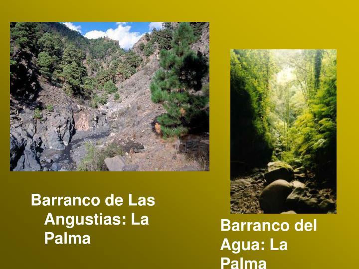 Barranco de Las Angustias: La Palma