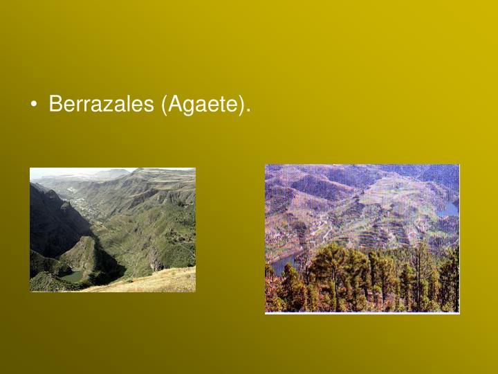 Berrazales (Agaete).