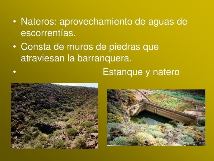 Nateros: aprovechamiento de aguas de escorrentías.