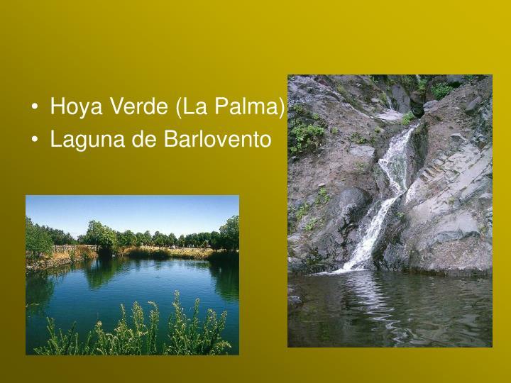 Hoya Verde (La Palma)