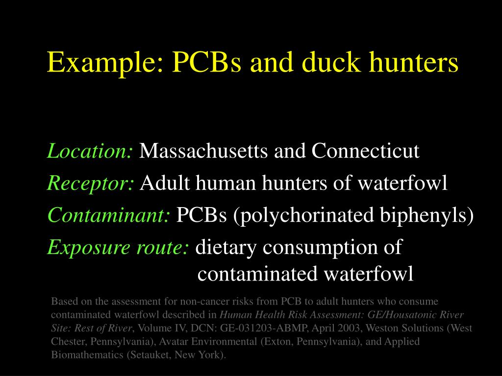 Example: PCBs and duck hunters