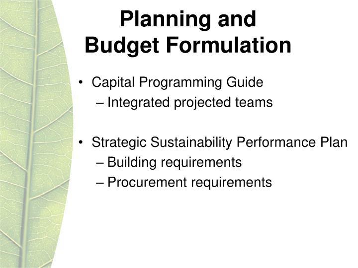 Planning and budget formulation