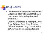 drug courts45