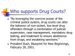 who supports drug courts28
