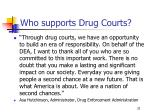 who supports drug courts33
