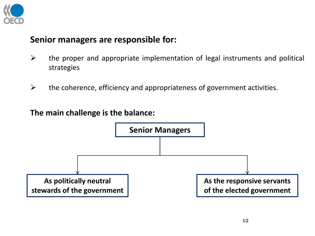 Senior managers are responsible for: