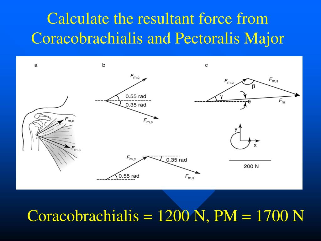 Calculate the resultant force from Coracobrachialis and Pectoralis Major