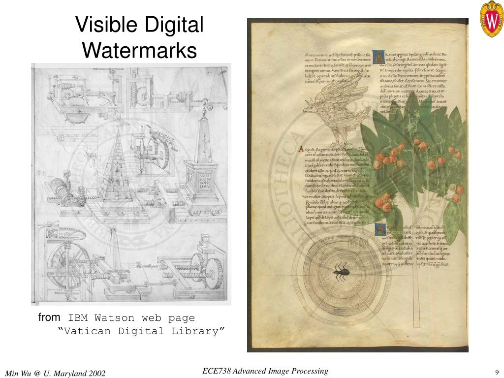 Visible Digital Watermarks