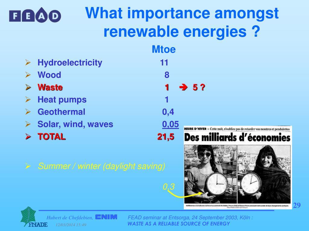 What importance amongst renewable energies ?
