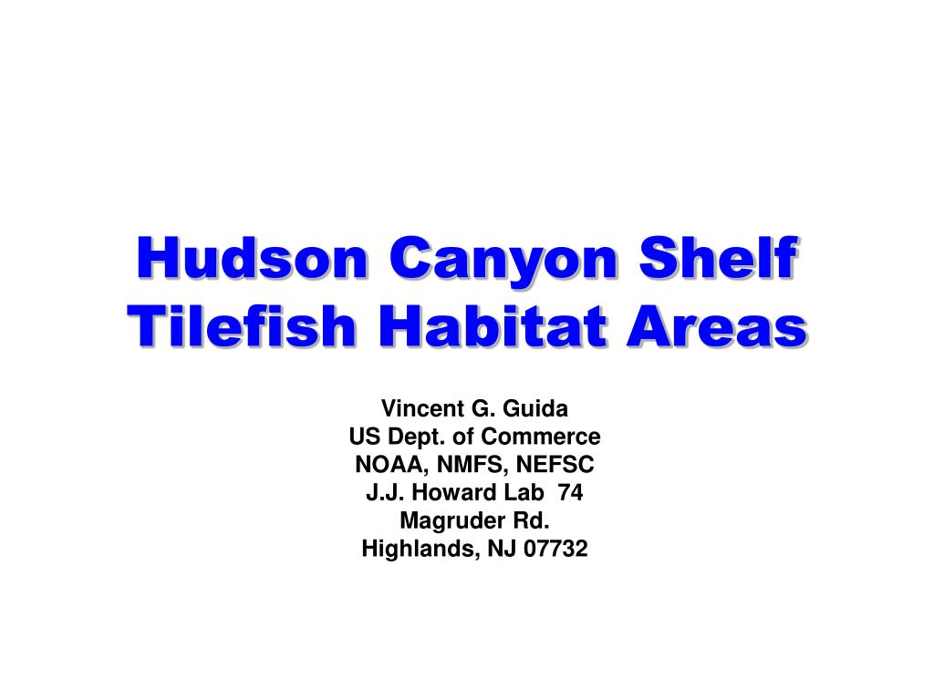 hudson canyon shelf tilefish habitat areas