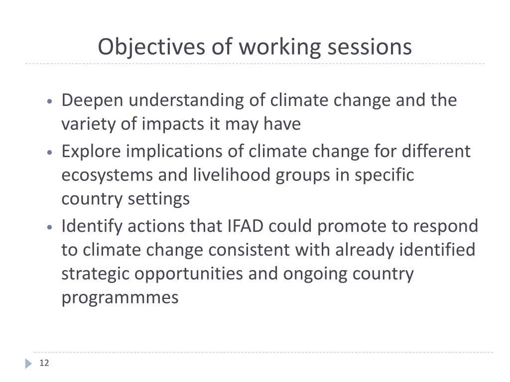 Objectives of working sessions