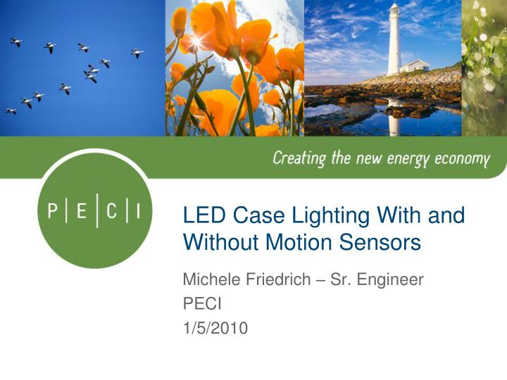 Led case lighting with and without motion sensors