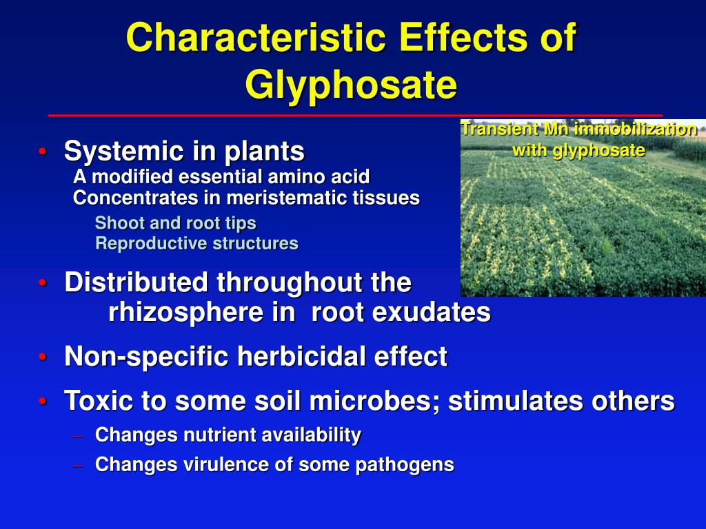 Characteristic Effects of Glyphosate