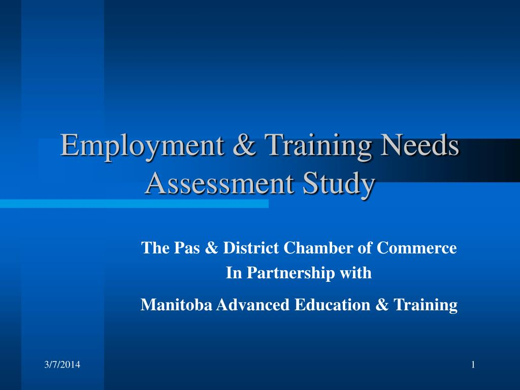 employment training needs assessment study l.
