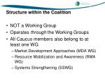 structure within the coalition