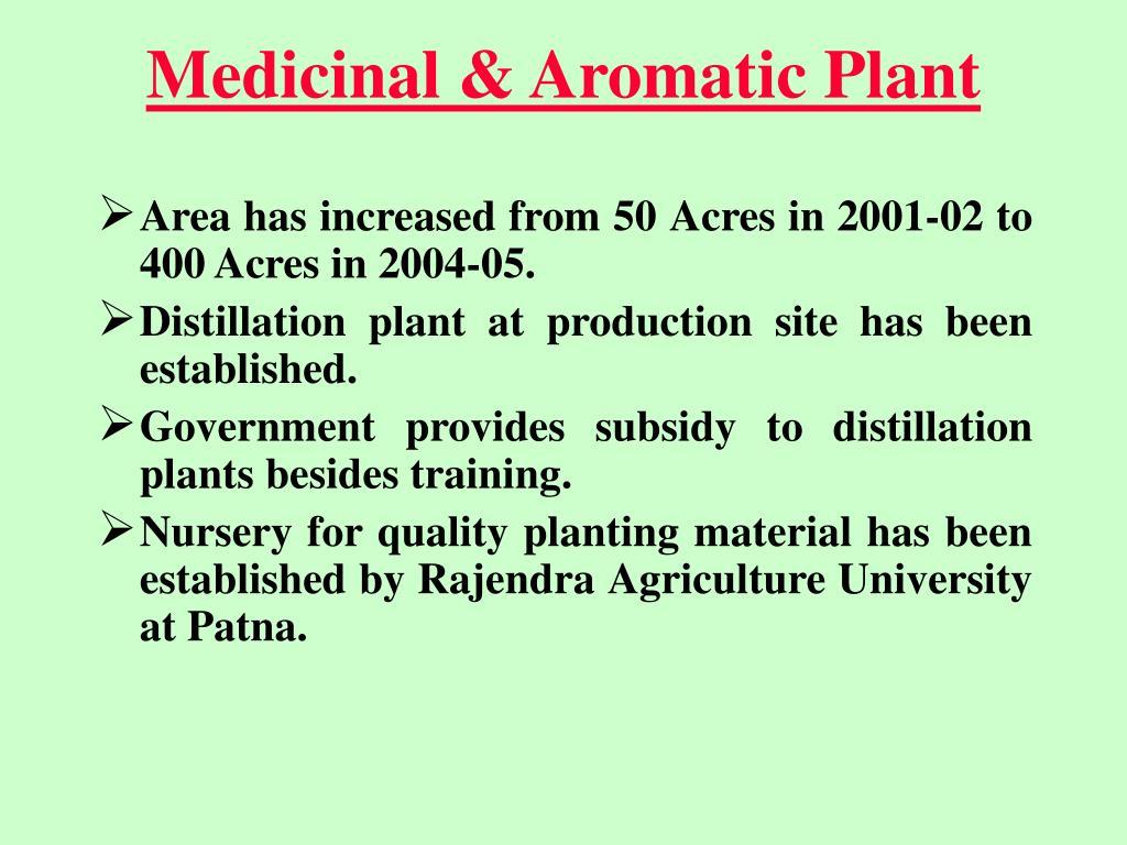 Medicinal & Aromatic Plant