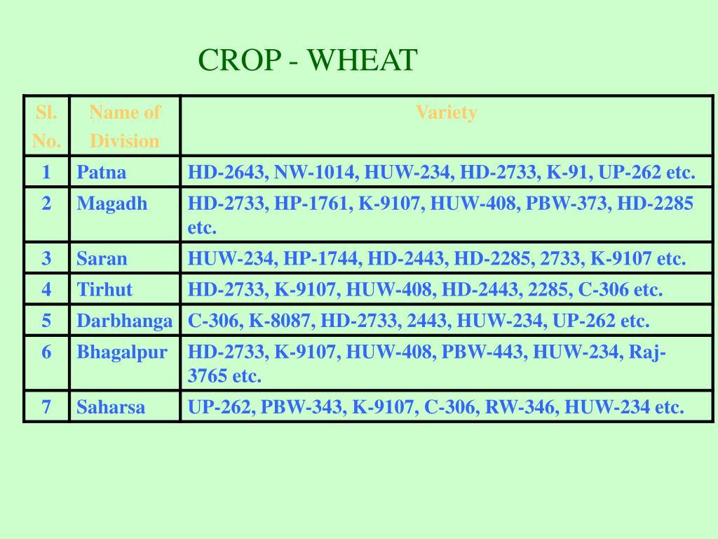 CROP - WHEAT