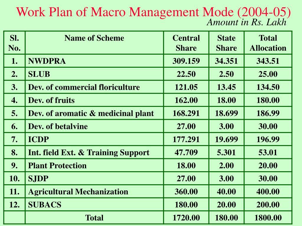 Work Plan of Macro Management Mode (2004-05)