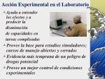acci n experimental en el laboratorio