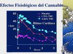 efectos fisiol gicos del cannabis