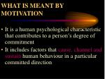 what is meant by motivation23