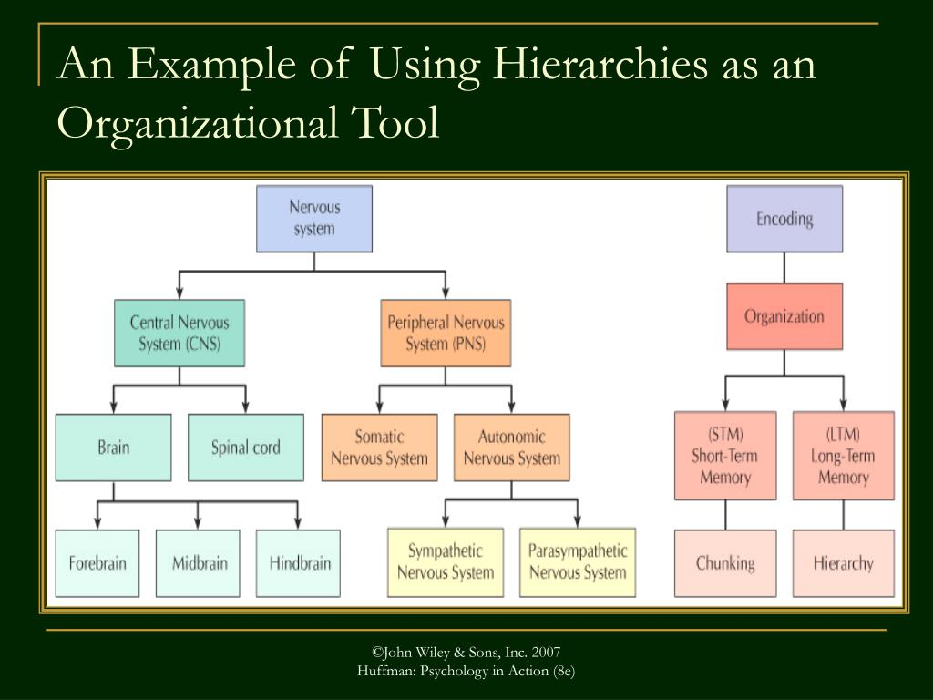 An Example of Using Hierarchies as an Organizational Tool