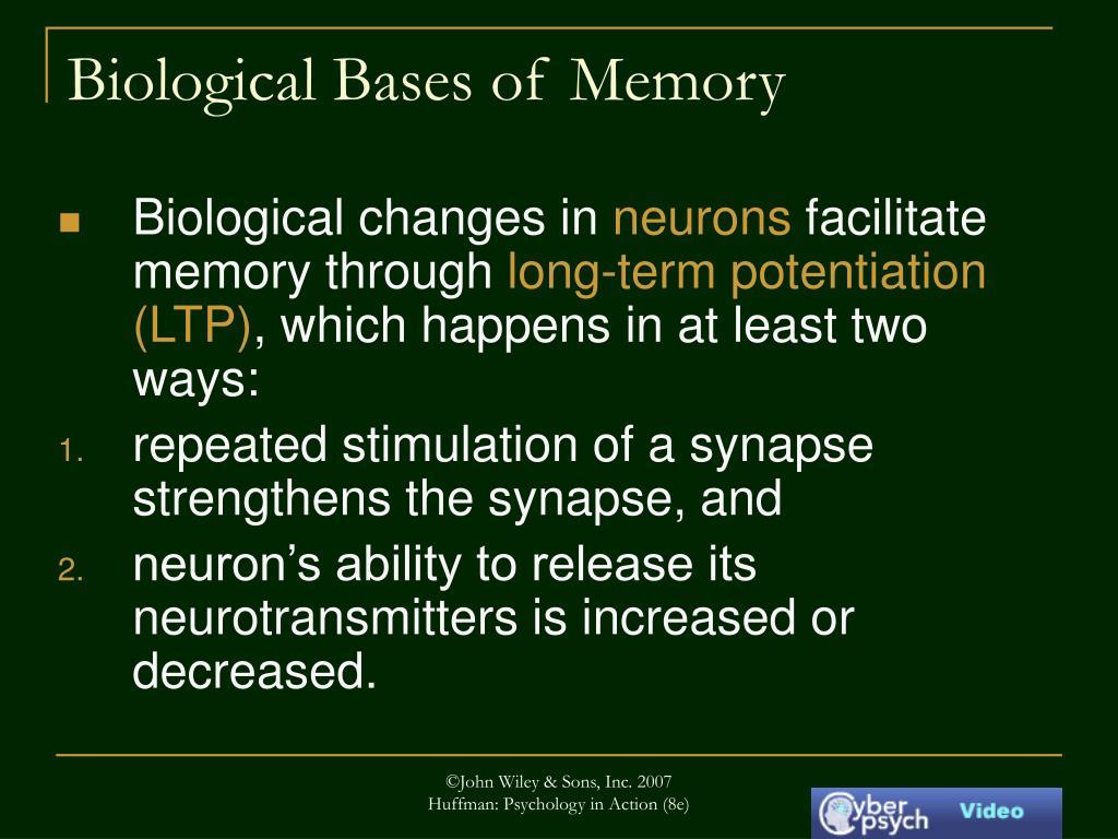 Biological Bases of Memory
