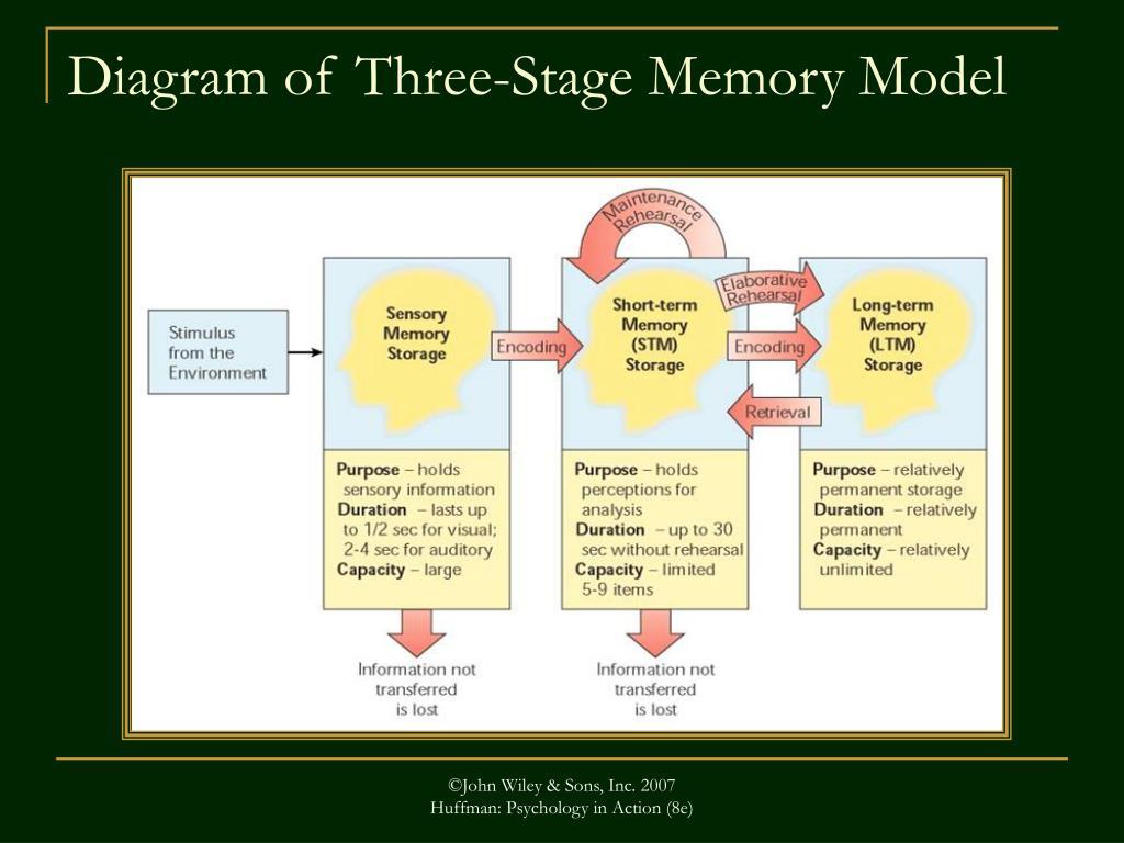 Diagram of Three-Stage Memory Model