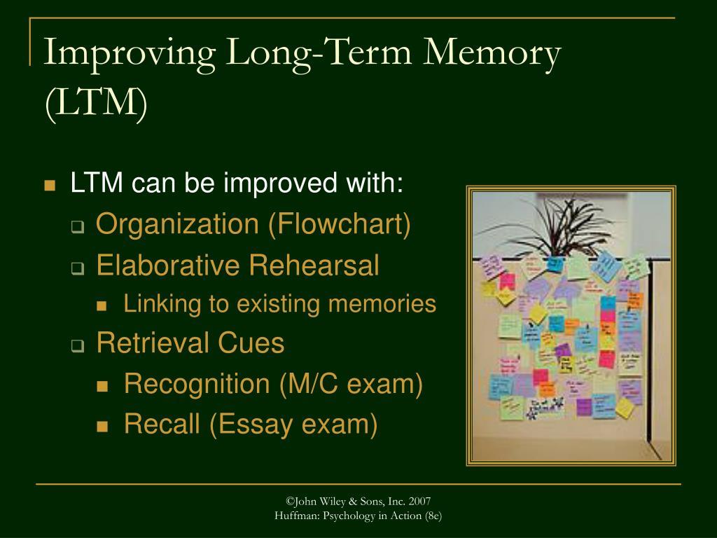 Improving Long-Term Memory (LTM)