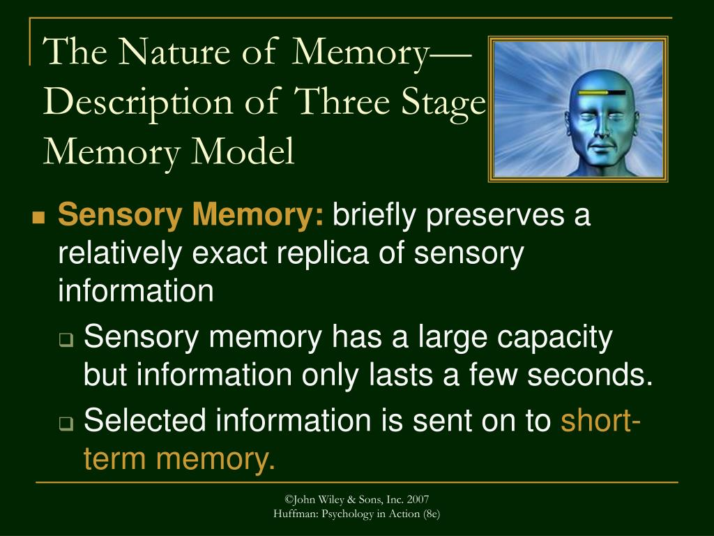 The Nature of Memory—