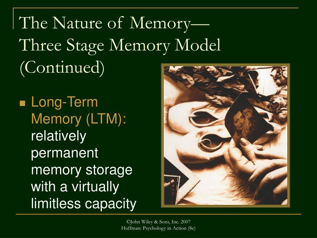 Long-Term Memory (LTM):
