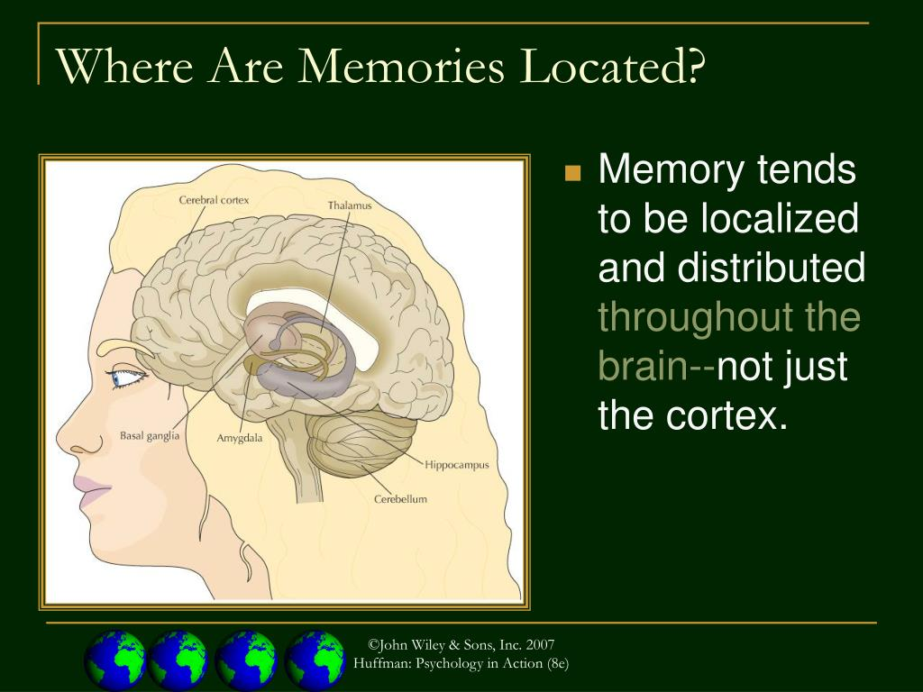 Memory tends to be localized and distributed