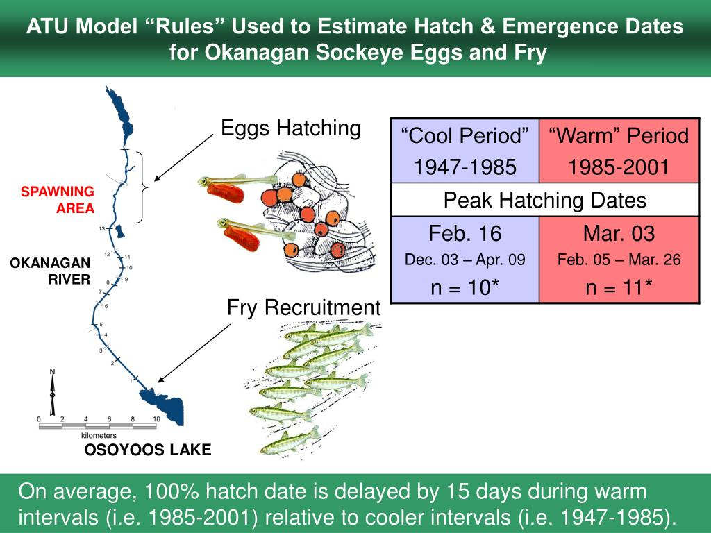 "ATU Model ""Rules"" Used to Estimate Hatch & Emergence Dates"