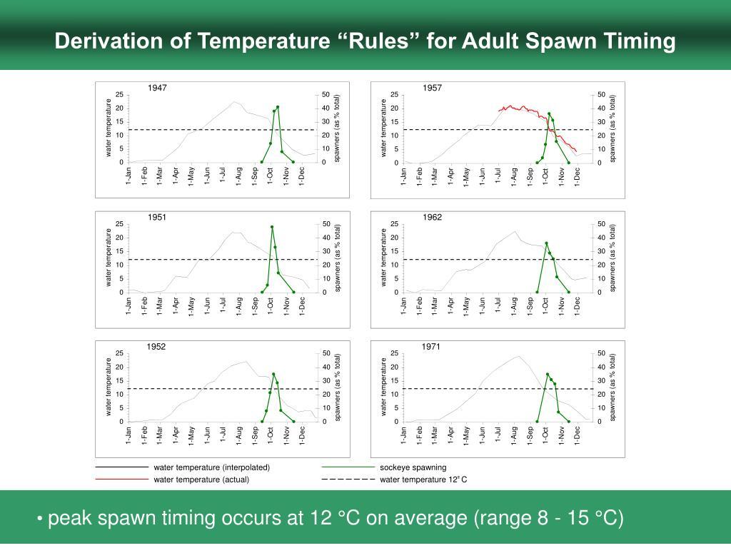 water temperature (interpolated)