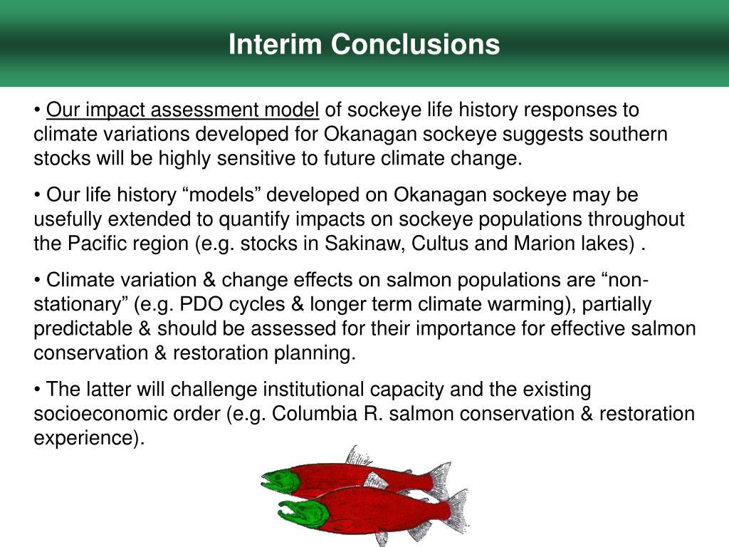 Interim Conclusions