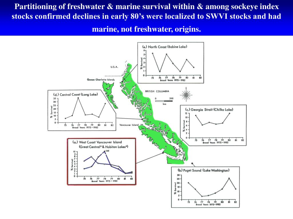 Partitioning of freshwater & marine survival within & among sockeye index stocks confirmed declines in early 80's were localized to SWVI stocks and had marine, not freshwater, origins.