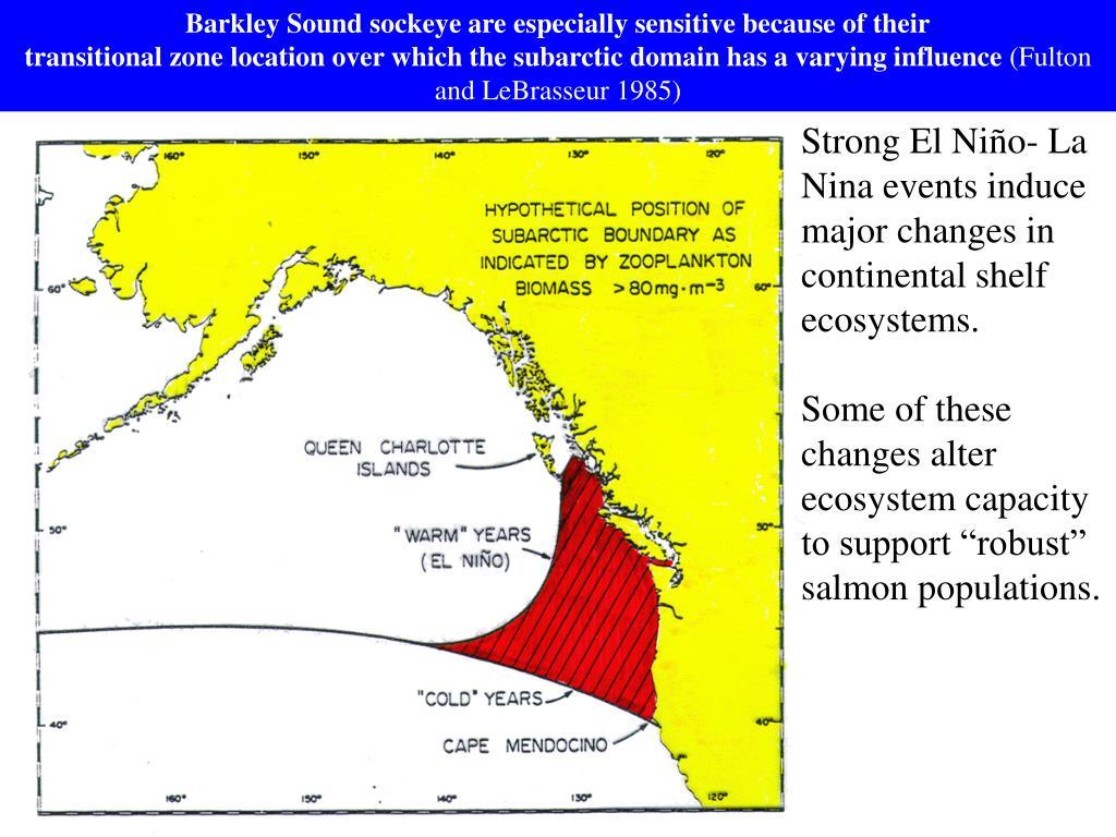 Barkley Sound sockeye are especially sensitive because of their