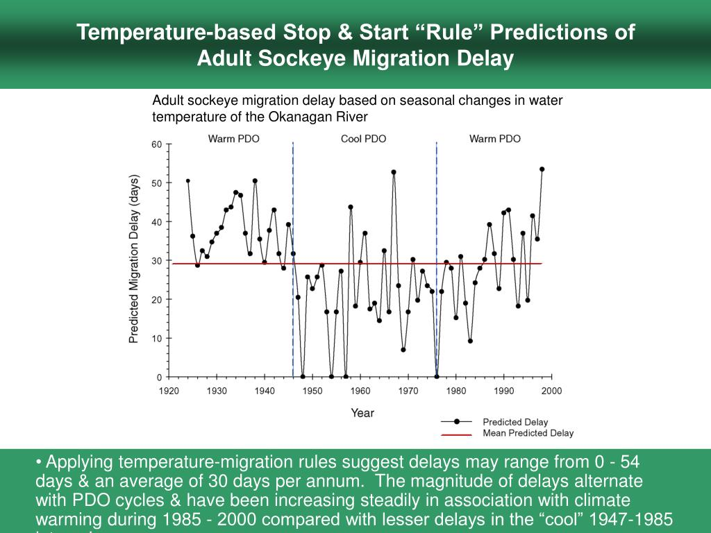 """Temperature-based Stop & Start """"Rule"""" Predictions of              Adult Sockeye Migration Delay"""