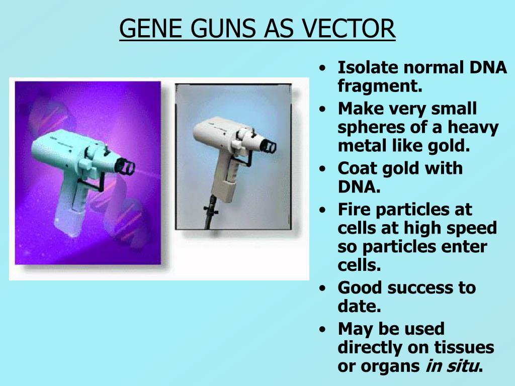 GENE GUNS AS VECTOR