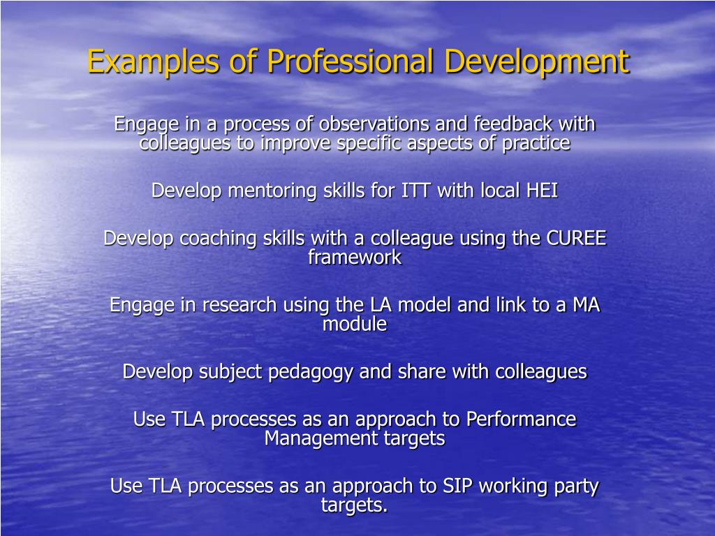 Examples of Professional Development