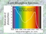 light absorption spectrum