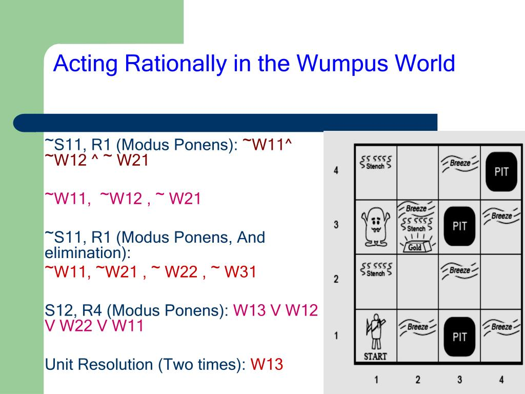 Acting Rationally in the Wumpus World