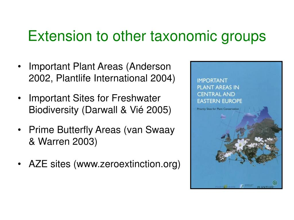 Extension to other taxonomic groups