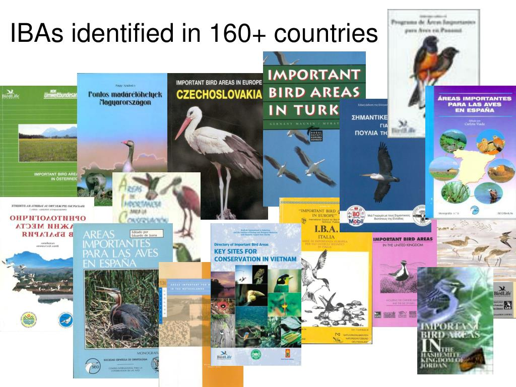 IBAs identified in 160+ countries