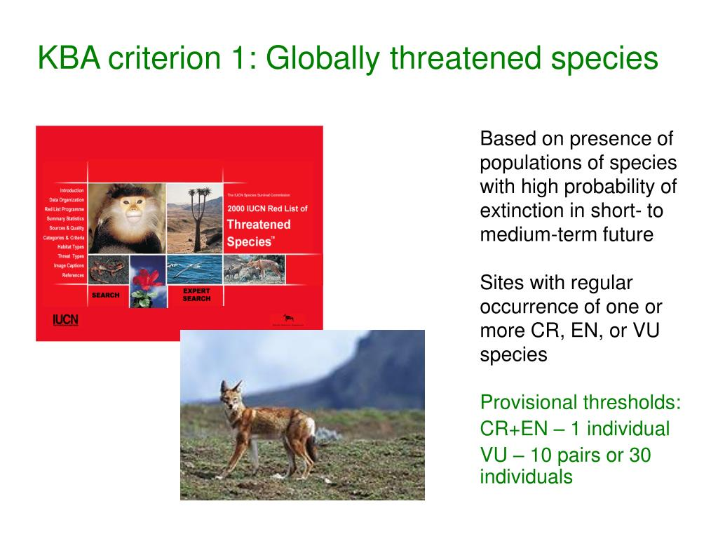 KBA criterion 1: Globally threatened species