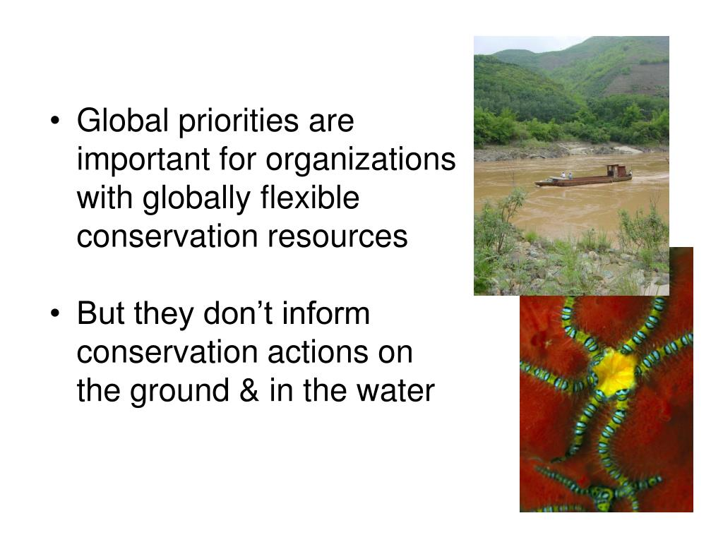Global priorities are important for organizations with globally flexible conservation resources