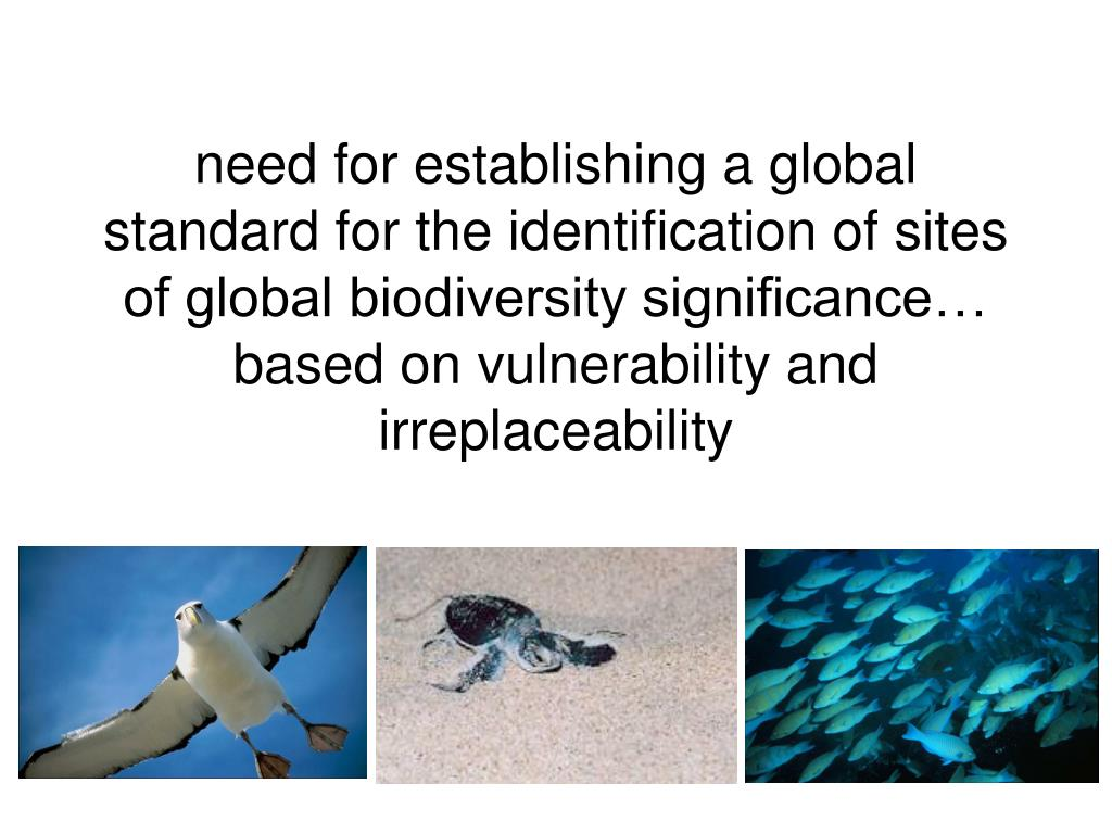 need for establishing a global standard for the identification of sites of global biodiversity significance… based on vulnerability and irreplaceability