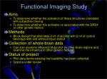 functional imaging study