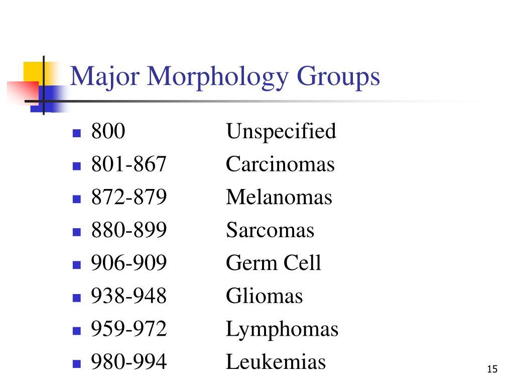 Major Morphology Groups